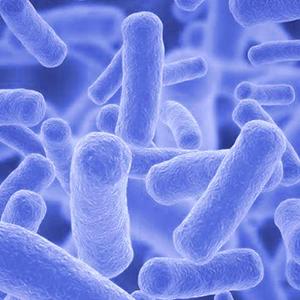 Detección tuberculosis