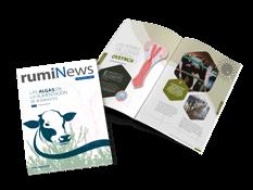 Revista rumiNews Noviembre 2018