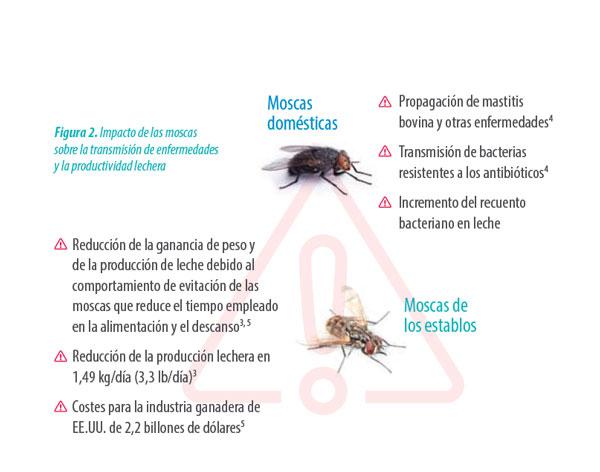 moscas en la leche
