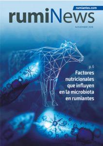 Revista rumiNews Noviembre 2019