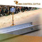 ¿La solución definitiva para pesar vacas y terneros? – Descubre CIMA CONTROL CATTLE