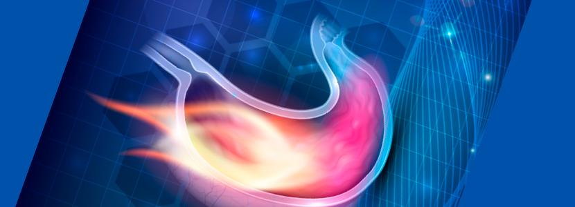 Úlcera de abomaso: la patología silente