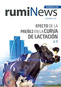 Revista rumiNews noviembre 2020