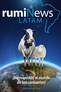 rumiNews LATAM 1er Trimestre 2021