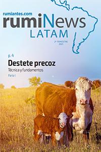rumiNews LATAM 2º Trimestre 2021